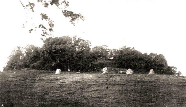 Old-photograph-Newgrange.jpg