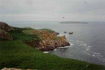 little_saltee_island_from_great_saltee_-_geograph-org-uk_-_150379