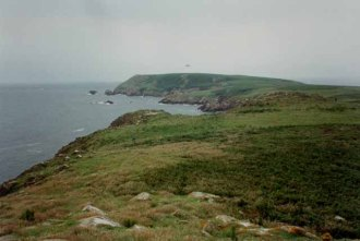 south_coast_of_great_saltee_island_-_geograph-org-uk_-_150385